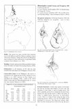 Horseshoe Bats of the World - Pelagic Publishing