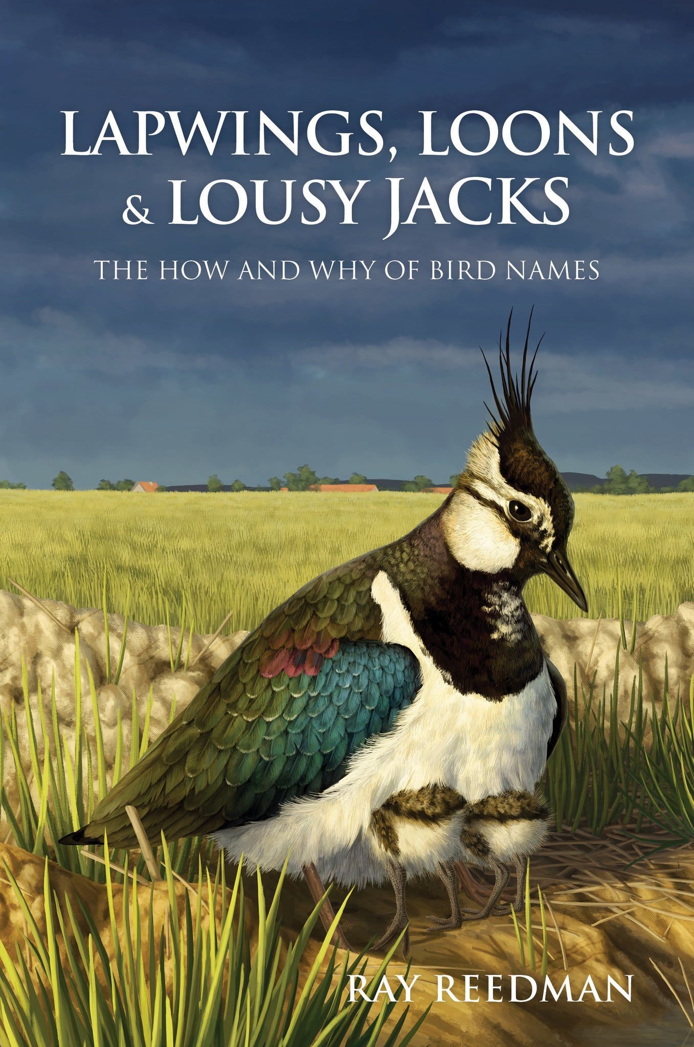 Lapwings, Loons and Lousy Jacks - Pelagic Publishing