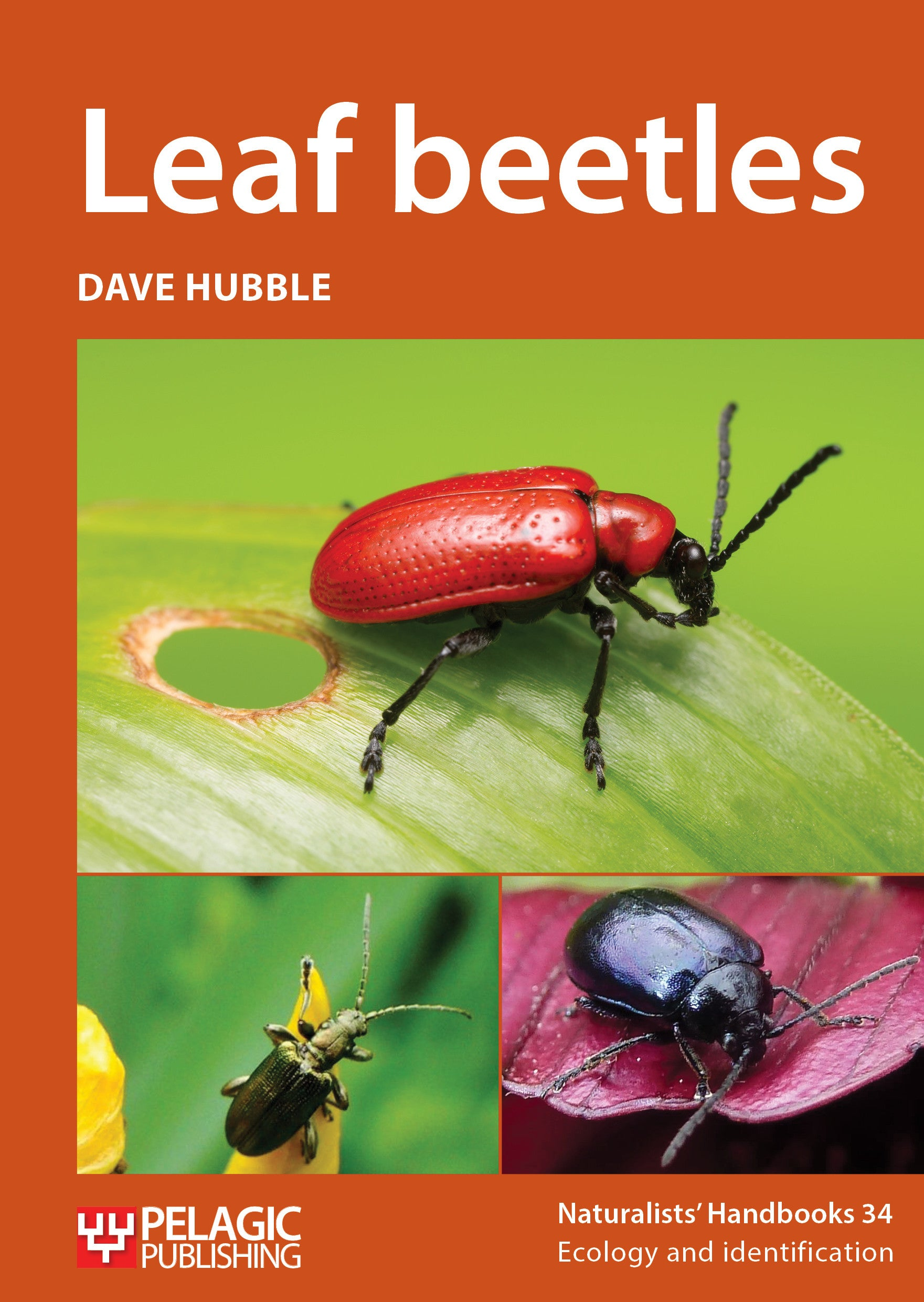 Leaf beetles - Pelagic Publishing