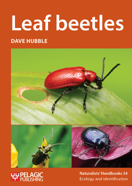 Pre publication offer on the field guide to the bats of the amazon leaf beetles pelagic publishing fandeluxe Images