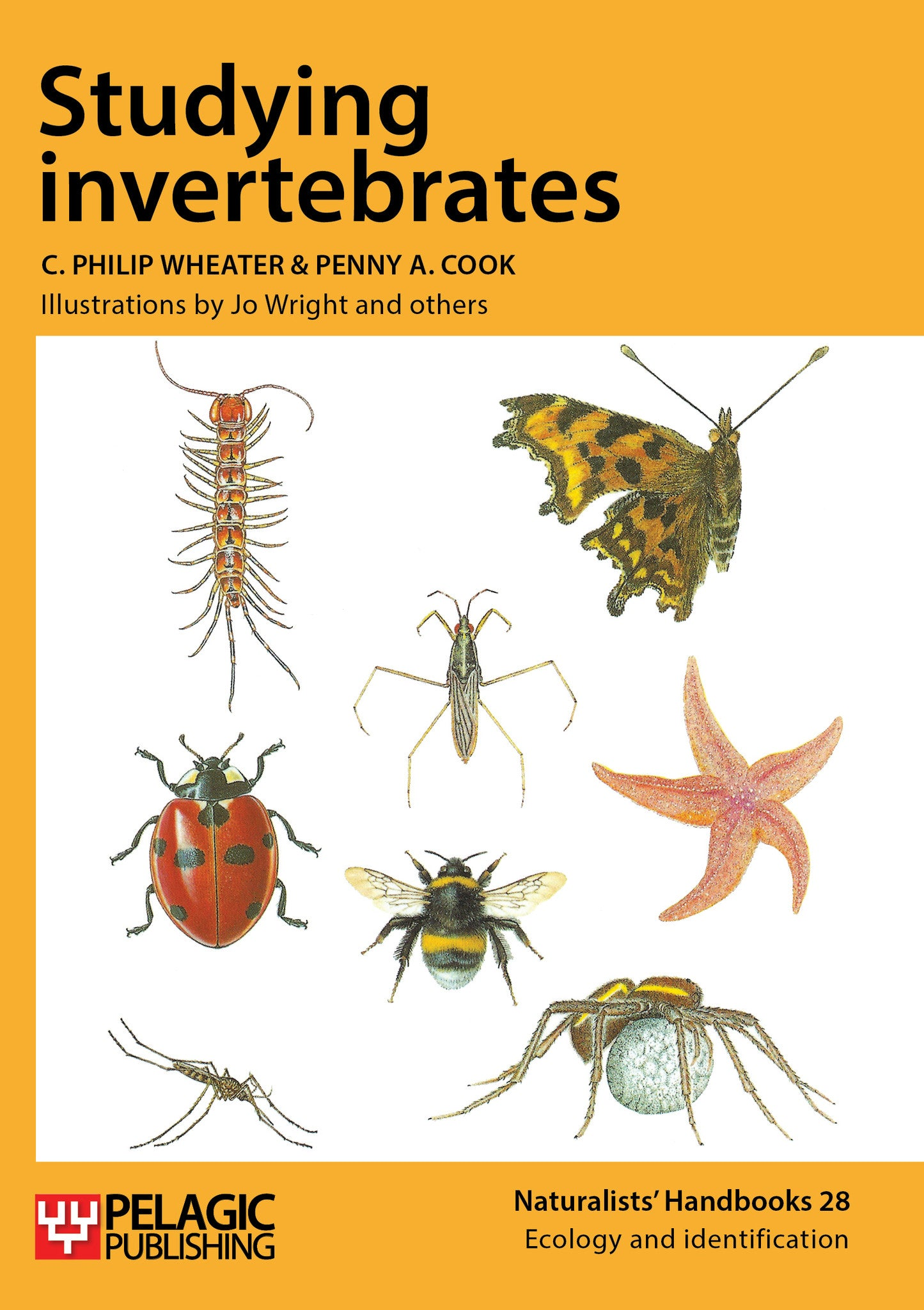 Studying Invertebrates - Pelagic Publishing