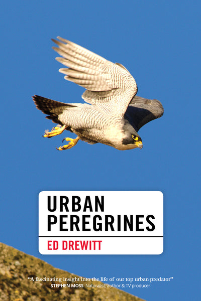 Urban Peregrines - Pelagic Publishing
