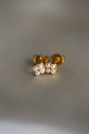 Cassia Stud Earrings - Boutique Minimaliste