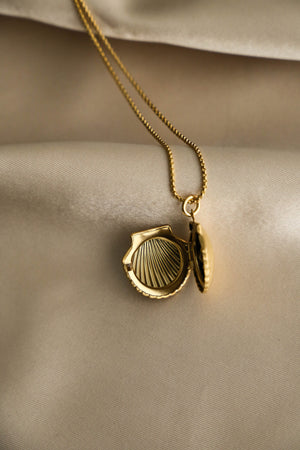 Shell Locket Necklace - Boutique Minimaliste
