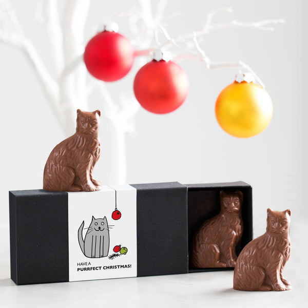 Personalised Chocolate Cat Boxes