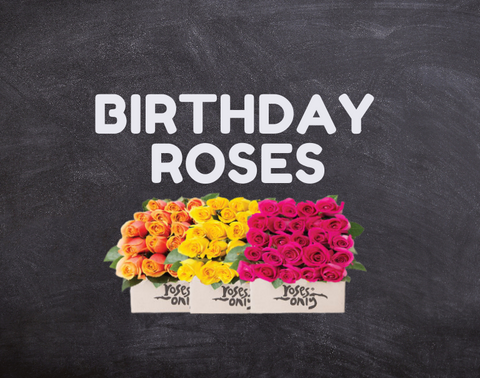 birthday roses singapore | roses only