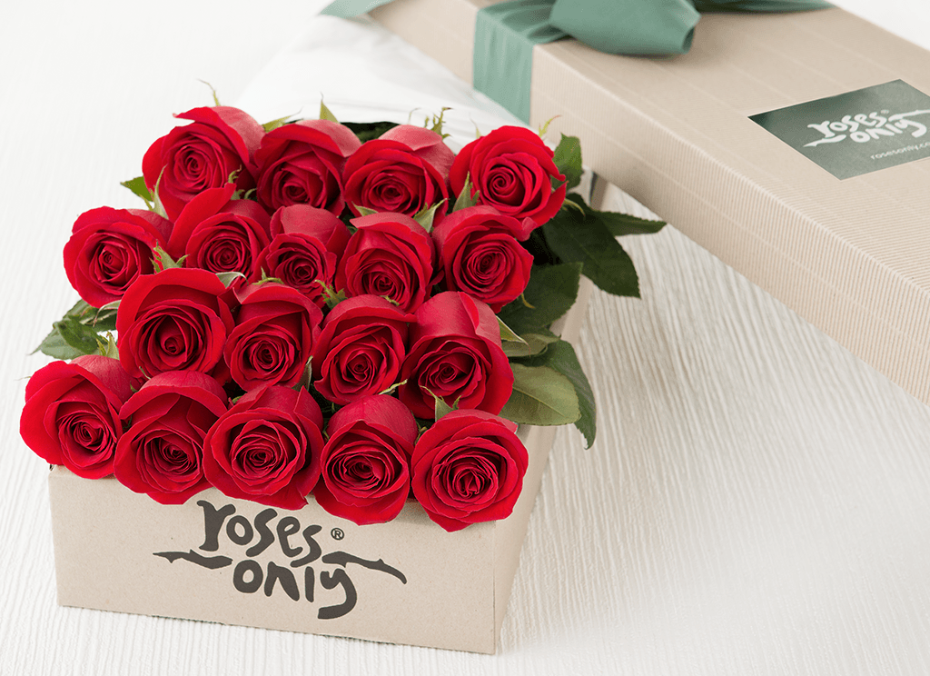 18 Red Roses Gift Box Roses Only Sg