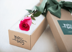 Single Bright Pink Rose Gift Box