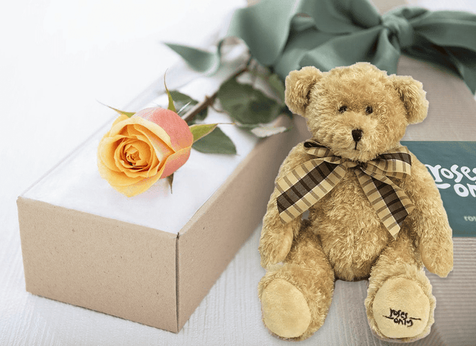 Single Cherry Brandy Rose Gift Box & Teddy Bear