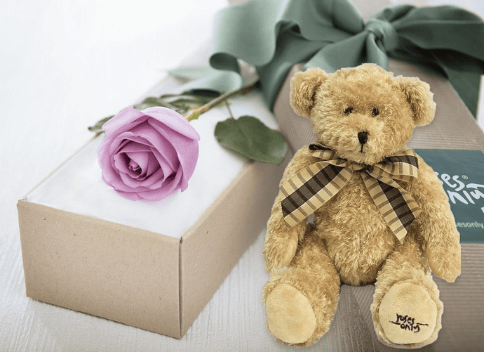 Single Mauve Rose Gift Box & Teddy Bear