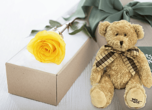 Single Yellow Rose Gift Box & Teddy Bear