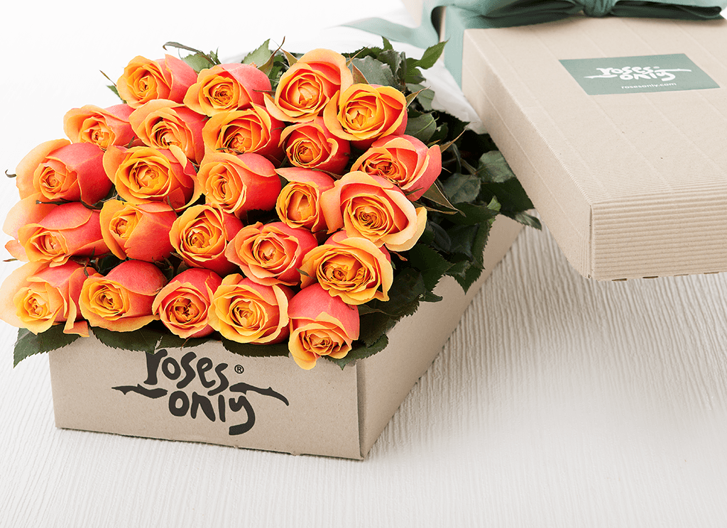 24 Cherry Brandy Roses Gift Box
