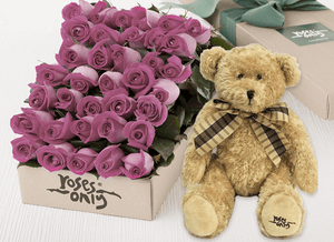 Mauve Roses Gift Box 36 & Teddy Bear