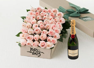 Pastel Pink Roses Gift Box 50 & Champagne
