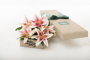 Mother's Day  6 Pink Lilies Gift Box