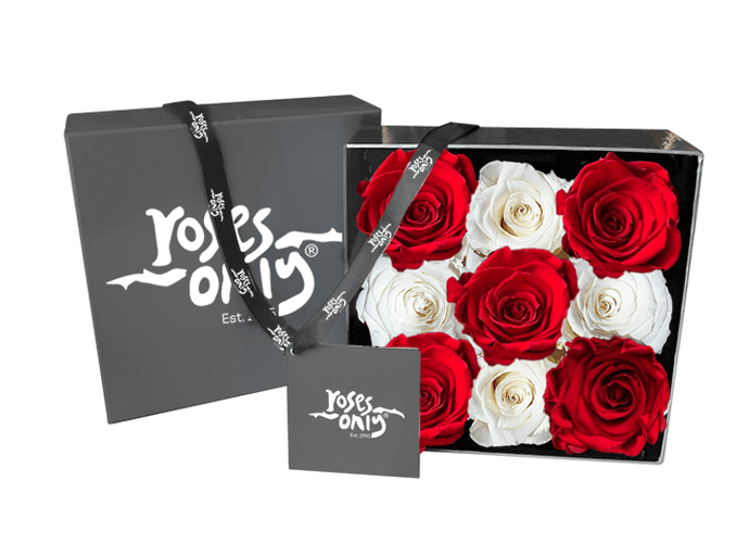 9 White & Red Infinity Preserved Roses