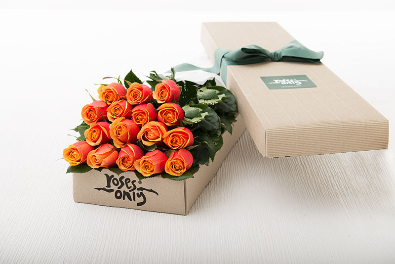 16 Cherry Brandy Roses Gift Box