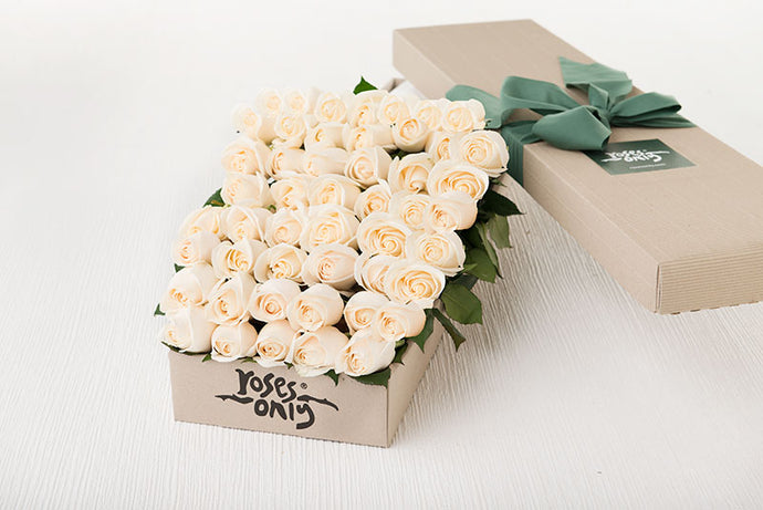 48 White Cream Roses Gift Box