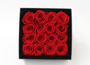 16 Red Infinity Preserved Roses