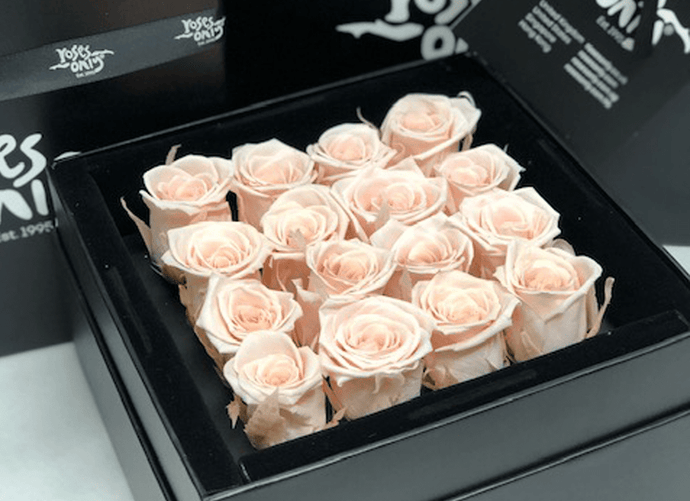16 Stunning pastel pink infinity roses, beautifully presented in a black box