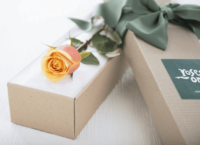 Single Cherry Brandy Rose Gift Box