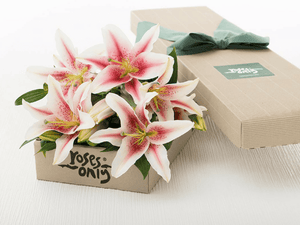12 PINK LILIES GIFT BOX