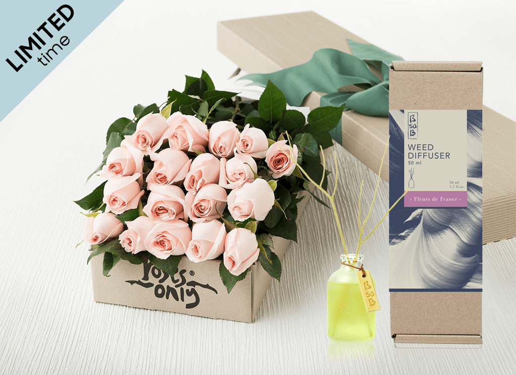 Mother's Day18 Pastel Pink Roses Gift Box & Rose Diffuser
