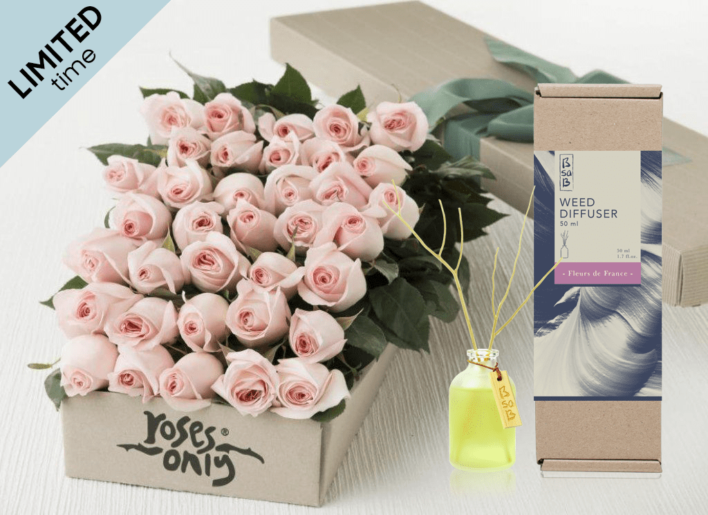 Mother's Day 36 Pastel Pink Roses Gift Box & Rose Diffuser (50ml)