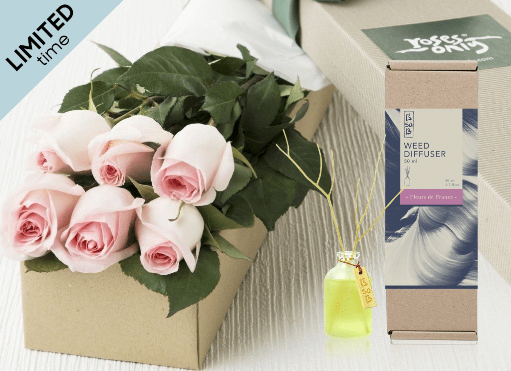 Mother's Day 6 Pastel Pink Roses Gift Box & Rose Diffuser (50ml)