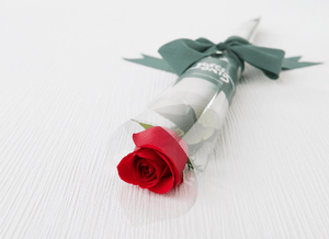Single Rose with Ribbon