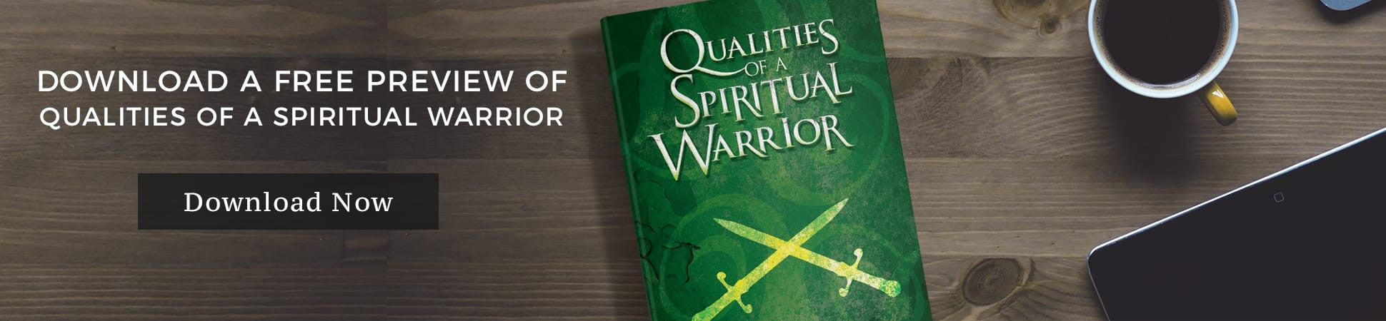 Qualities of a Spiritual Warrior FREE preview