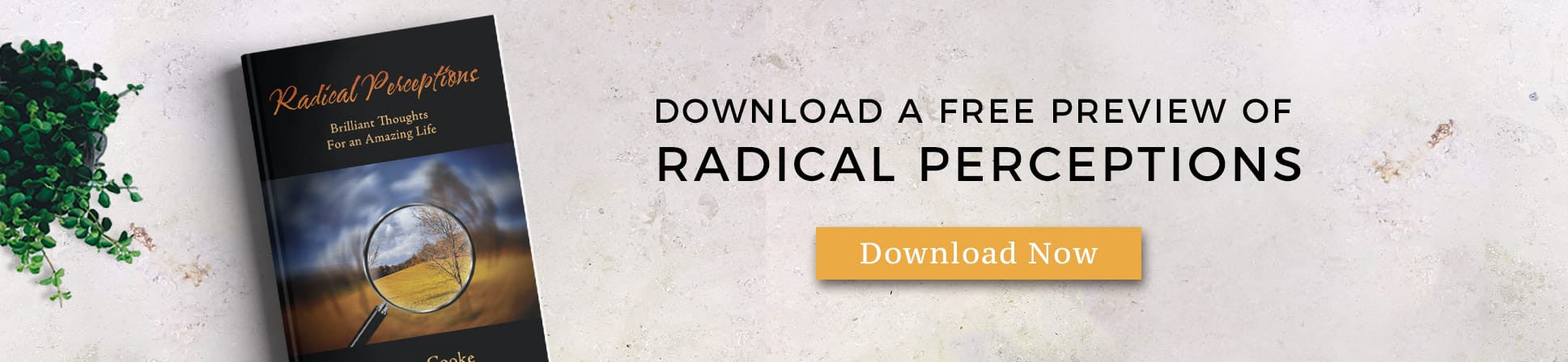 Radical Perceptions FREE preview