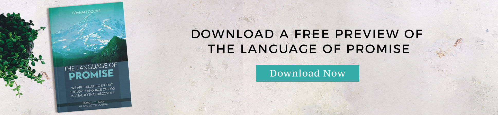 The Language of Promise FREE preview