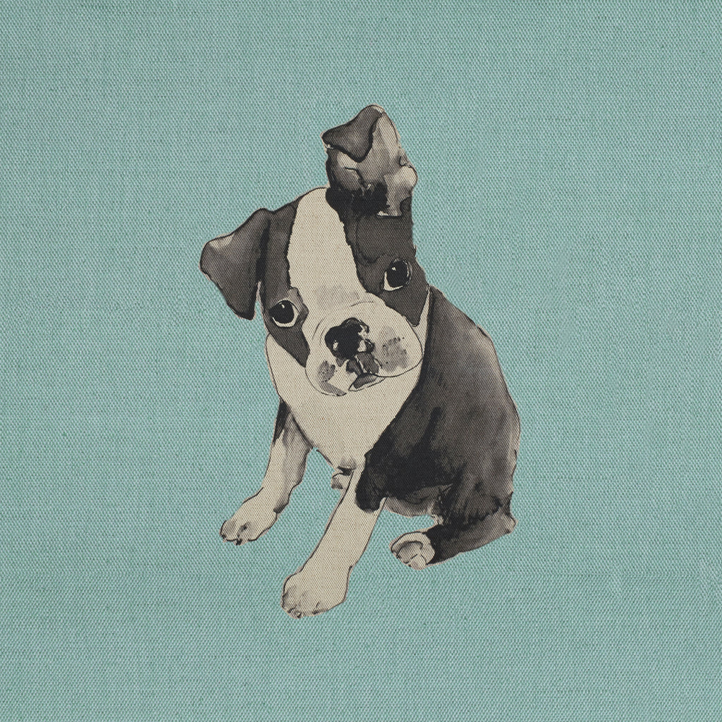 boston terrier puppy - cushion panel
