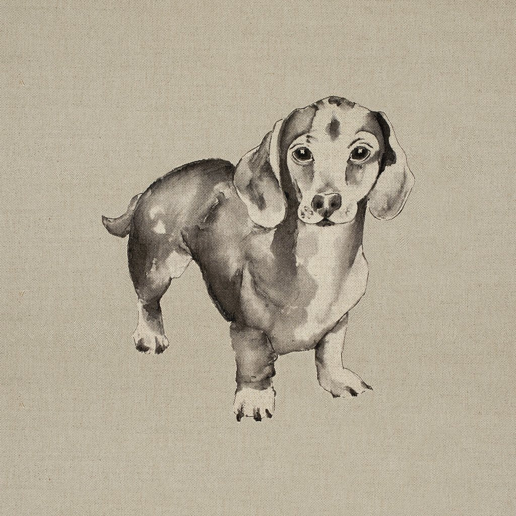 Fabric Cushion Panel - Lexie - Dachshund Fabric Cushion Panel