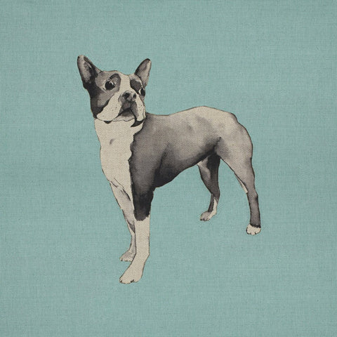 Fabric Cushion Panel - Spearmint - Boston Terrier Fabric Cushion Panel