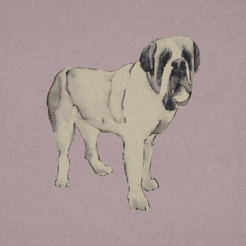 Fabric Cushion Panel - Sully - St.bernard Fabric Cushion Panel