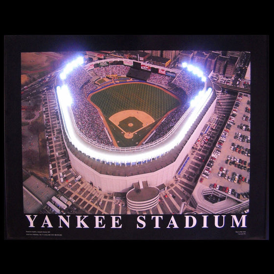Yankee Stadium Neon/LED Picture - Man Cave Boutique