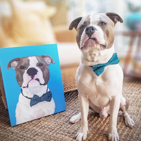 Custom Pet Portrait Canvas