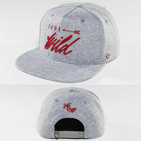 Just Rhyse / Snapback Cap Tolsona Starter in gray