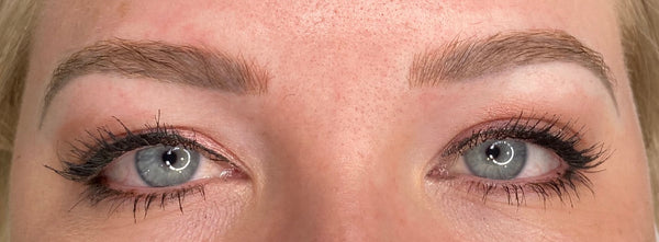 Ashy Brow Colour Correction Case Study Healed 1st Session