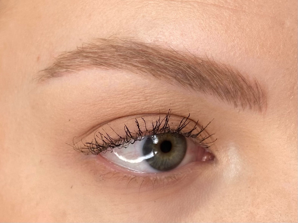 Megan Day 21 Post Microblading and Microshading Procedure