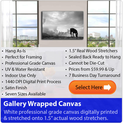 Select Wallhogs Gallery Wrapped Canvas Material