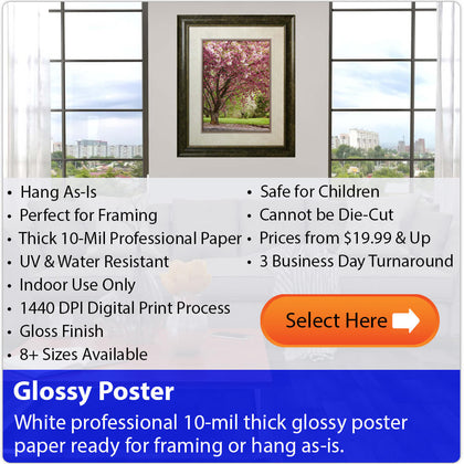 Select Wallhogs Glossy Poster Paper Material