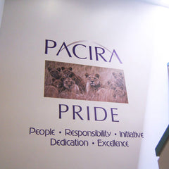 Pacira Stairwell Wall Decal