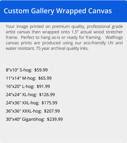 Wallhogs Professional Gallery Wrapped Canvas Pricing