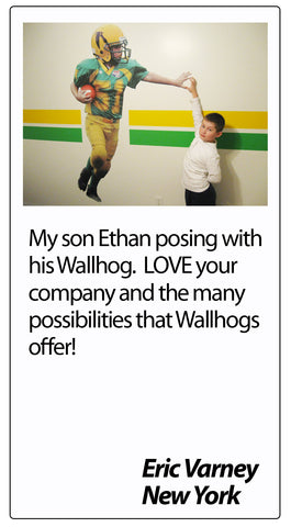 Wallhogs Customer Testimonial #3