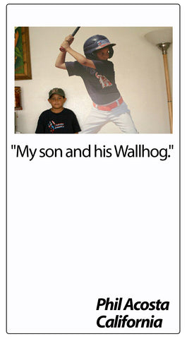 Wallhogs Customer Testimonial #50