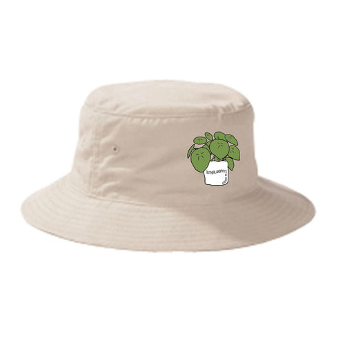 Money Plant Bucket Hat (4565615444037)