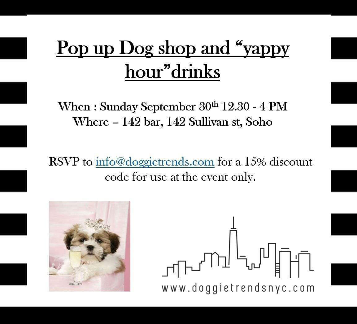 Pop Up Dog Accessories Shop in Soho, NYC.